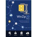Winzip Pro 20 1 Year Maintenance 50 -99 User (e/u Info Req)