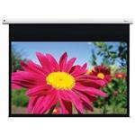 Projector Screen Electric DE-1123EGA 123in 16:10, 1.0/ Matte White