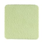 Travel Cleaning Pad for Apple iPad